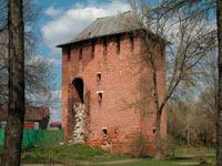 Одна из сохранившихся башен
